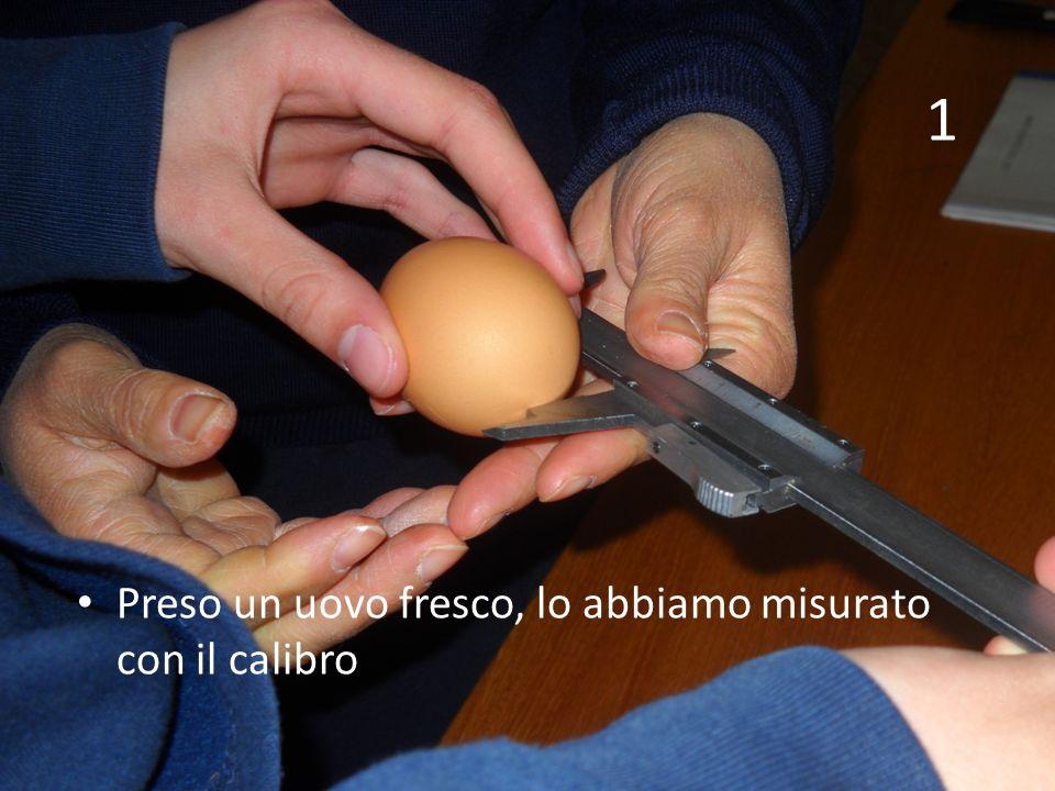 Preso un uovo fresco, lo abbiamo misurato con il calibro 1
