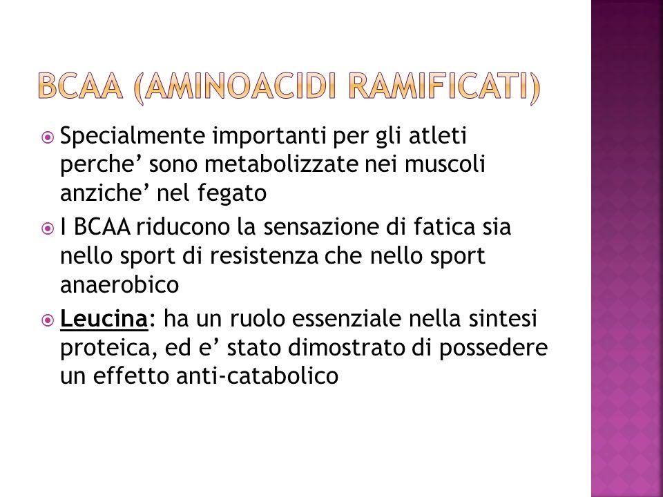 Specialmente importanti per gli atleti perche sono metabolizzate nei muscoli anziche nel fegato I BCAA riducono la sensazione di fatica sia nello spor