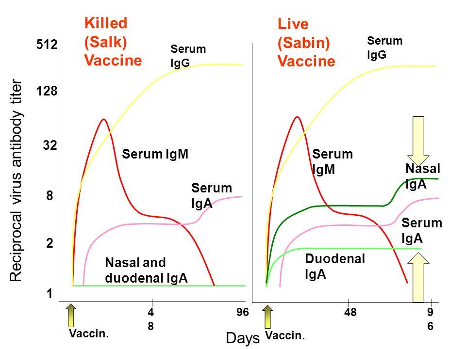 Reciprocal virus antibody titer 512 128 32 8 2 1 Serum IgG Serum IgM Nasal and duodenal IgA Nasal IgA Serum IgA Duodenal IgA Days Vaccin.