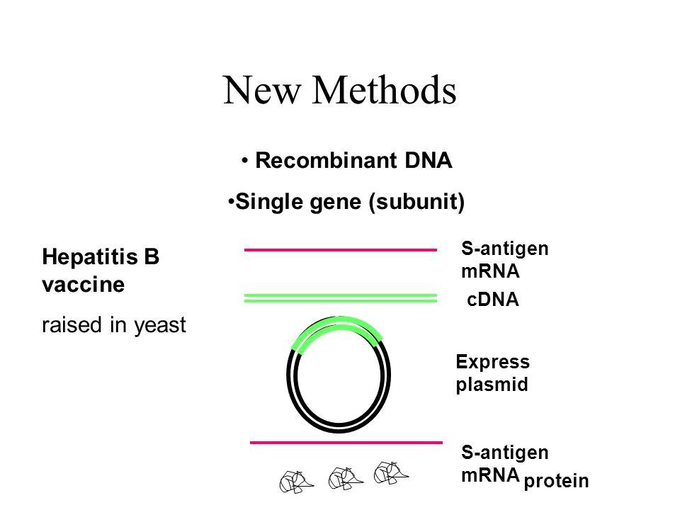 New Methods Recombinant DNA Single gene (subunit) S-antigen mRNA cDNA Express plasmid S-antigen mRNA protein Hepatitis B vaccine raised in yeast