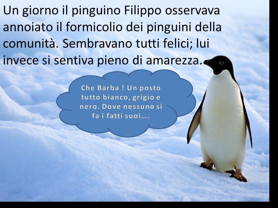Un giorno il pinguino Filippo osservava annoiato il formicolio dei pinguini della comunità. Sembravano tutti felici; lui invece si sentiva pieno di am