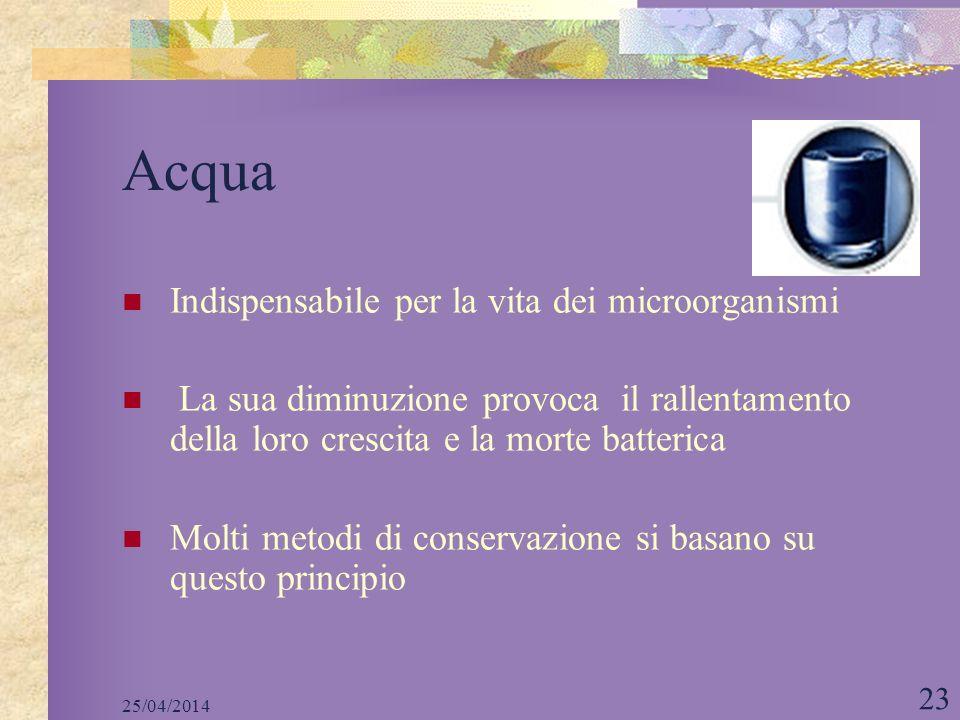 25/04/2014 23 Acqua Indispensabile per la vita dei microorganismi La sua diminuzione provoca il rallentamento della loro crescita e la morte batterica