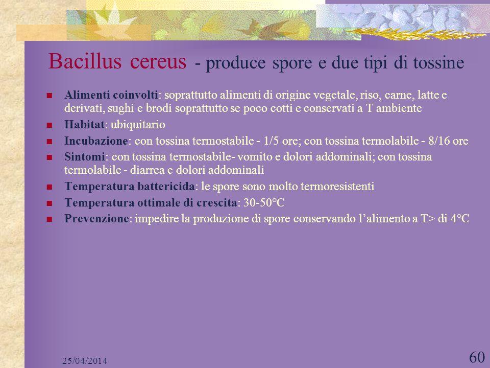 25/04/2014 60 Bacillus cereus - produce spore e due tipi di tossine Alimenti coinvolti: soprattutto alimenti di origine vegetale, riso, carne, latte e