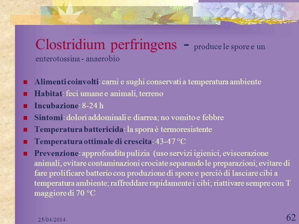 25/04/2014 62 Clostridium perfringens - produce le spore e un enterotossina - anaerobio Alimenti coinvolti: carni e sughi conservati a temperatura amb