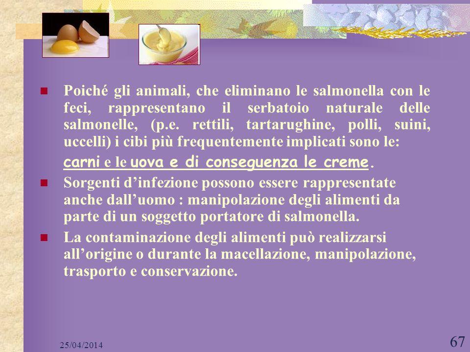 25/04/2014 67 Poiché gli animali, che eliminano le salmonella con le feci, rappresentano il serbatoio naturale delle salmonelle, (p.e. rettili, tartar