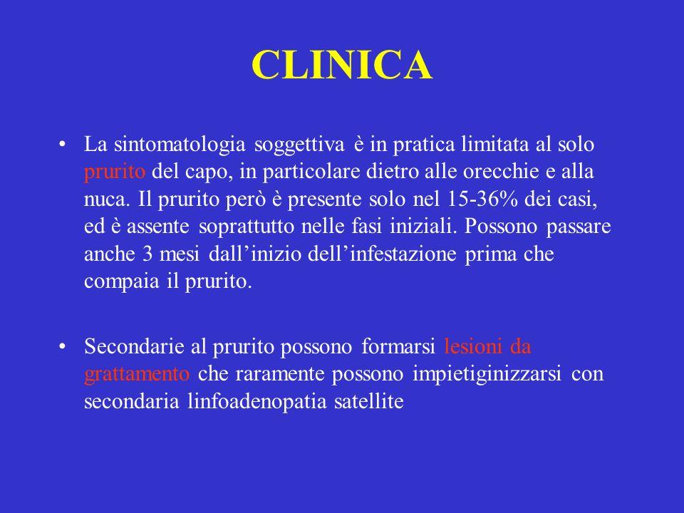CLINICA La sintomatologia soggettiva è in pratica limitata al solo prurito del capo, in particolare dietro alle orecchie e alla nuca. Il prurito però