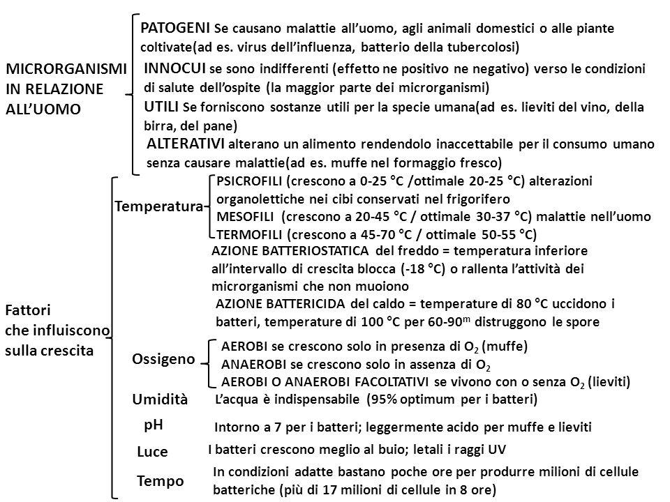 MICRORGANISMI IN RELAZIONE ALLUOMO PATOGENI Se causano malattie alluomo, agli animali domestici o alle piante coltivate(ad es. virus dellinfluenza, ba