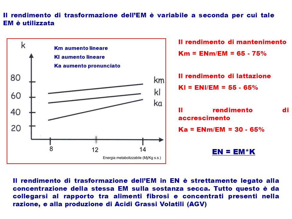 Il rendimento di trasformazione dellEM è variabile a seconda per cui tale EM è utilizzata Il rendimento di mantenimento Km = ENm/EM = 65 - 75% Il rend