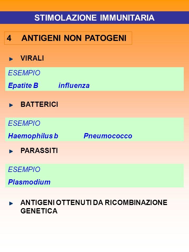 STIMOLAZIONE IMMUNITARIA 4 ANTIGENI NON PATOGENI VIRALI ESEMPIO EpatiteBinfluenza ESEMPIO Haemophilus bPneumococco BATTERICI ESEMPIO Plasmodium PARASS