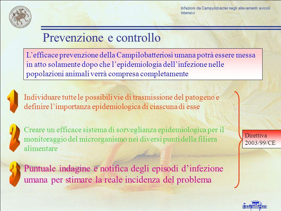Infezioni da Campylobacter negli allevamenti avicoli intensivi Prevenzione e controllo Lefficace prevenzione della Campilobatteriosi umana potrà esser