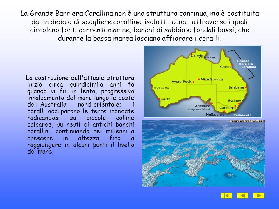 La Grande Barriera Corallina non è una struttura continua, ma è costituita da un dedalo di scogliere coralline, isolotti, canali attraverso i quali circolano forti correnti marine, banchi di sabbia e fondali bassi, che durante la bassa marea lasciano affiorare i coralli.