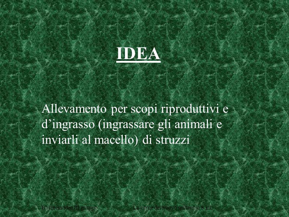 Allevamento per scopi riproduttivi e dingrasso (ingrassare gli animali e inviarli al macello) di struzzi IDEA