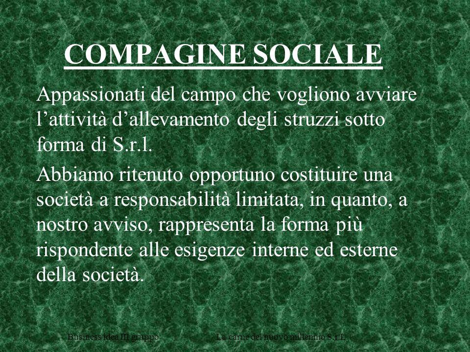 Business idea III gruppo La carne del nuovo millennio S.r.L ANALISI DELLA DOMANDA CHI ACQUISTA.