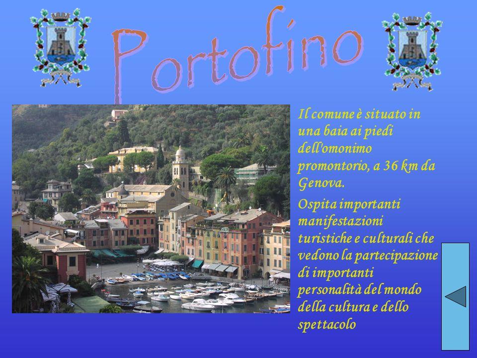 Il comune è situato in una baia ai piedi dell'omonimo promontorio, a 36 km da Genova. Ospita importanti manifestazioni turistiche e culturali che vedo