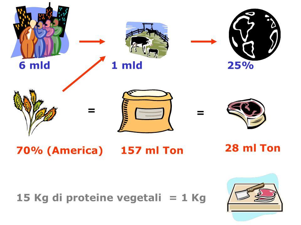 6 mld1 mld25% 70% (America) = 157 ml Ton = 28 ml Ton 15 Kg di proteine vegetali = 1 Kg