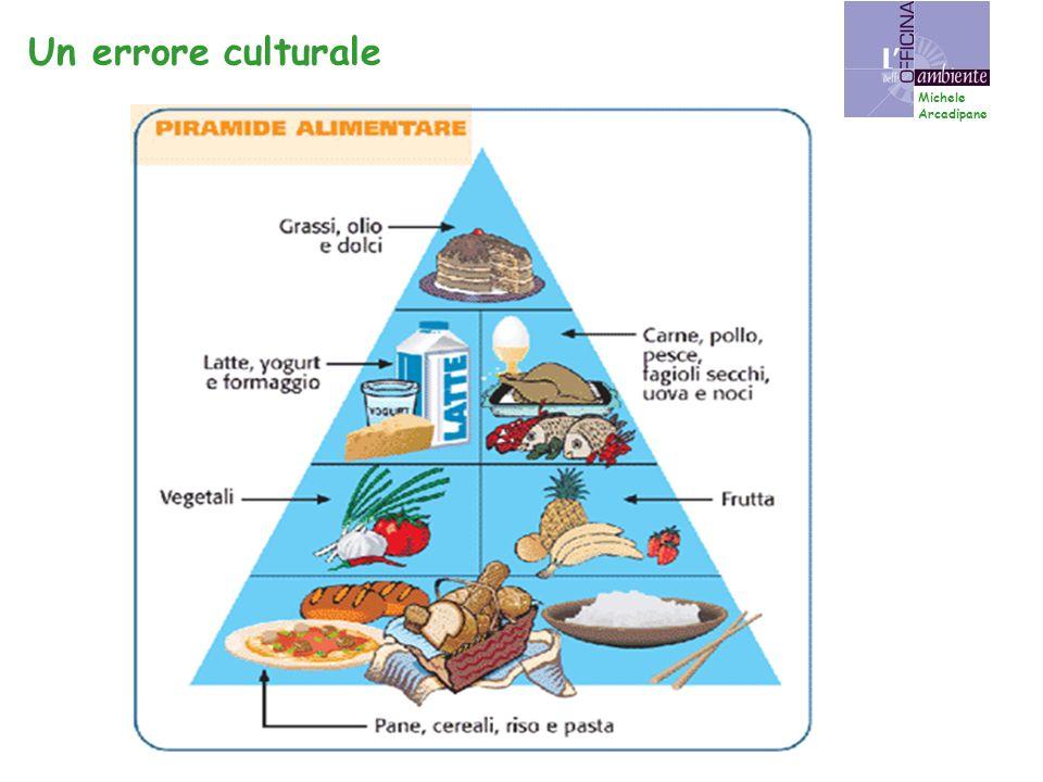 Consumo eccessivo di cibi: * troppo calorici * troppo raffinati * troppo arricchiti Un problema di tutti i paesi ricchi Michele Arcadipane