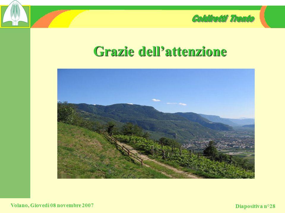 Diapositiva n°28 Volano, Giovedì 08 novembre 2007 Grazie dellattenzione