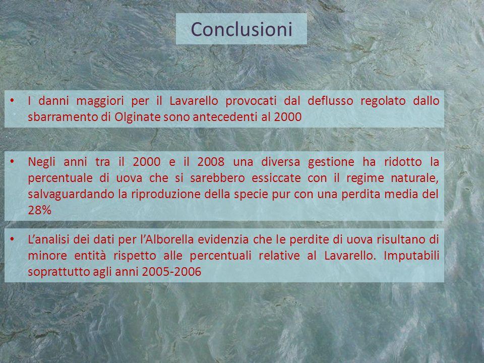 Conclusioni I danni maggiori per il Lavarello provocati dal deflusso regolato dallo sbarramento di Olginate sono antecedenti al 2000 Negli anni tra il