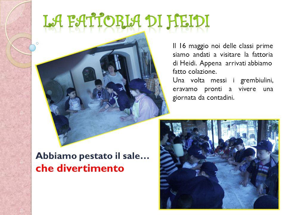 Il 16 maggio noi delle classi prime siamo andati a visitare la fattoria di Heidi.