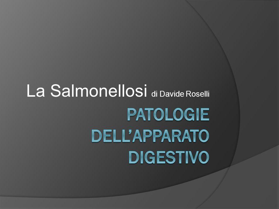 La Salmonellosi di Davide Roselli