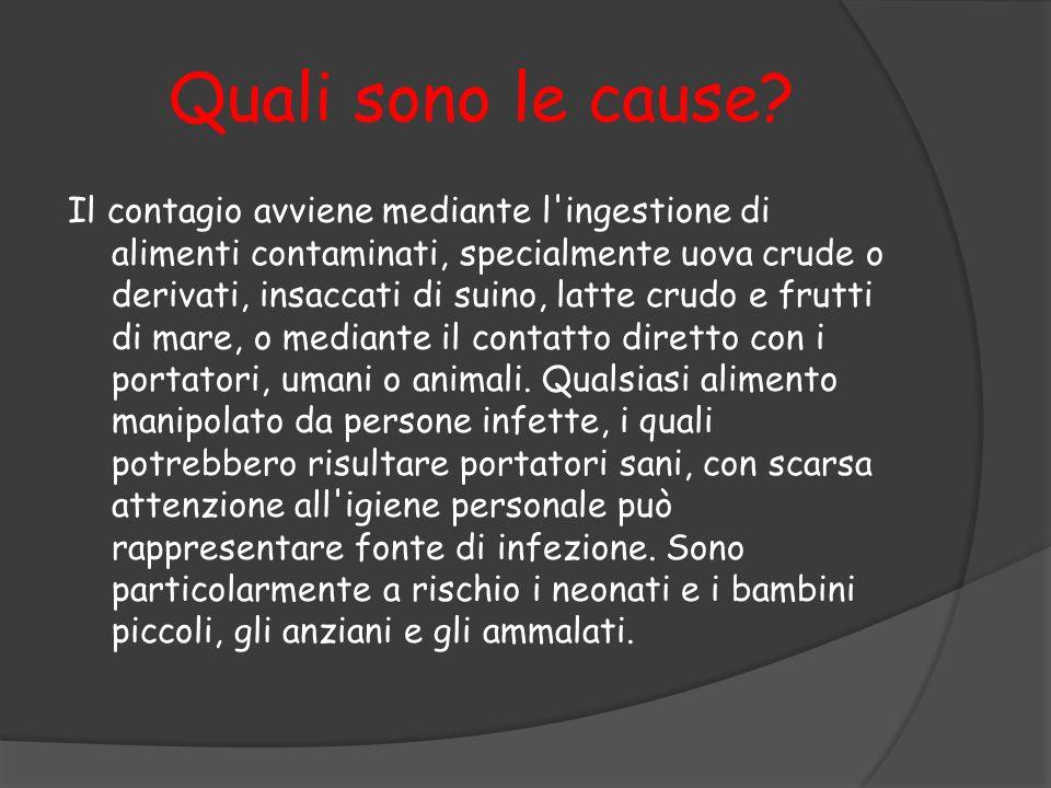 Quali sono le cause? Il contagio avviene mediante l'ingestione di alimenti contaminati, specialmente uova crude o derivati, insaccati di suino, latte
