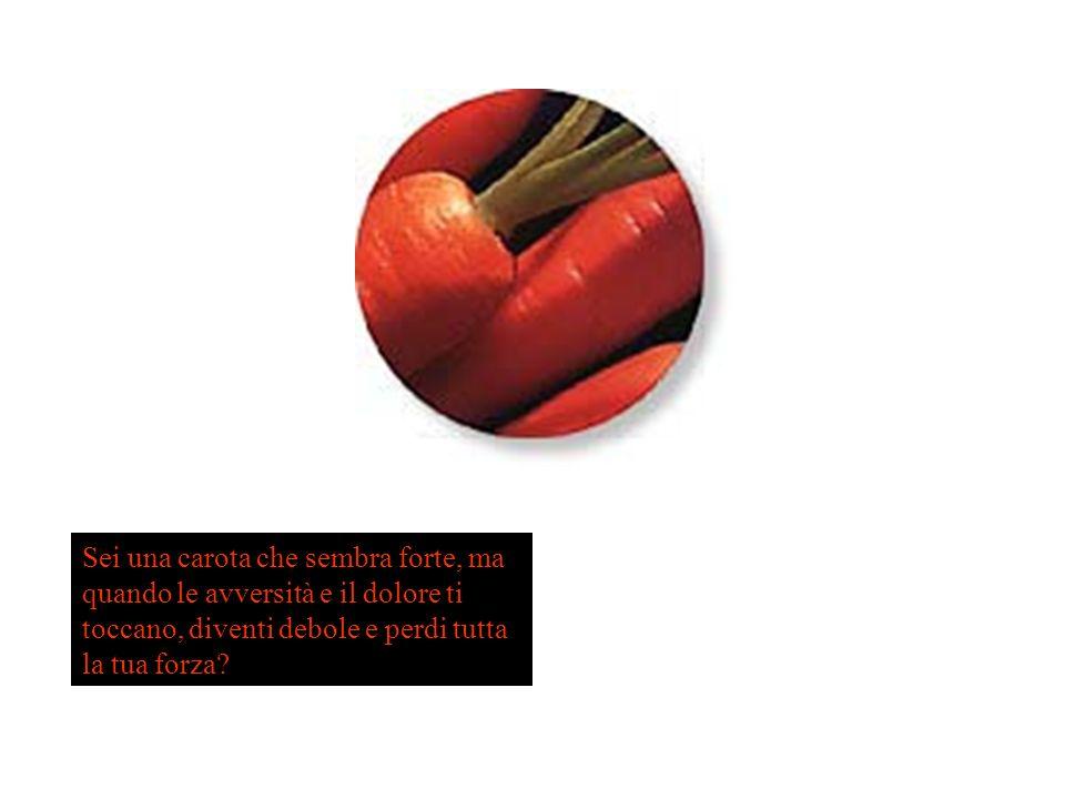 Sei una carota che sembra forte, ma quando le avversità e il dolore ti toccano, diventi debole e perdi tutta la tua forza?