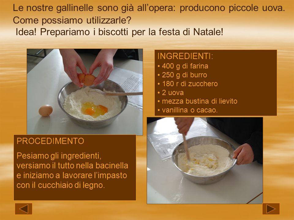 Le nostre gallinelle sono già allopera: producono piccole uova. Come possiamo utilizzarle? Idea! Prepariamo i biscotti per la festa di Natale! INGREDI