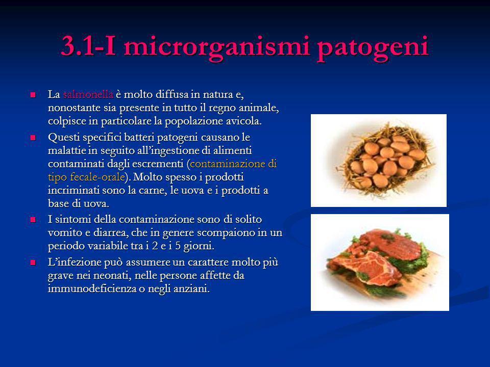 3.1-I microrganismi patogeni La salmonella è molto diffusa in natura e, nonostante sia presente in tutto il regno animale, colpisce in particolare la