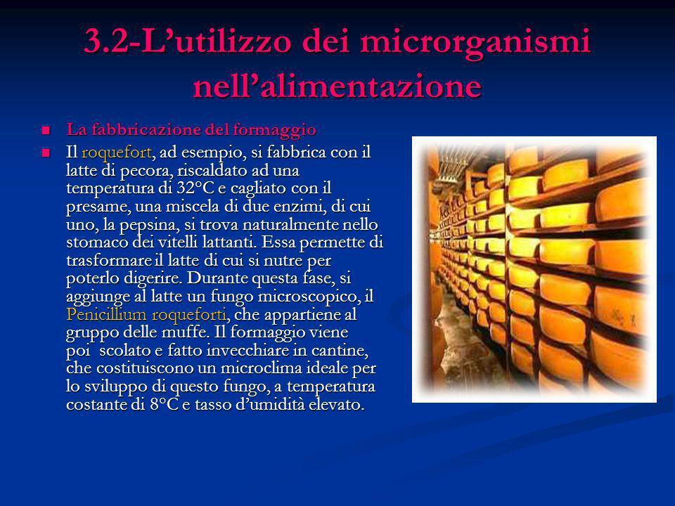 3.2-Lutilizzo dei microrganismi nellalimentazione La fabbricazione del formaggio La fabbricazione del formaggio Il roquefort, ad esempio, si fabbrica