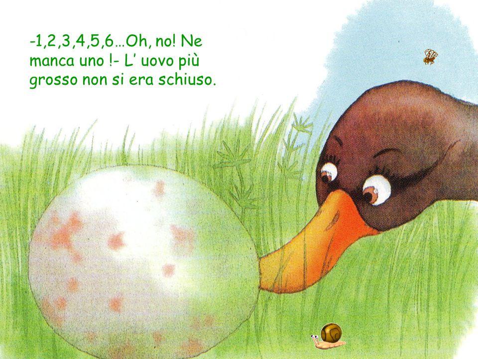 -1,2,3,4,5,6…Oh, no! Ne manca uno !- L uovo più grosso non si era schiuso.