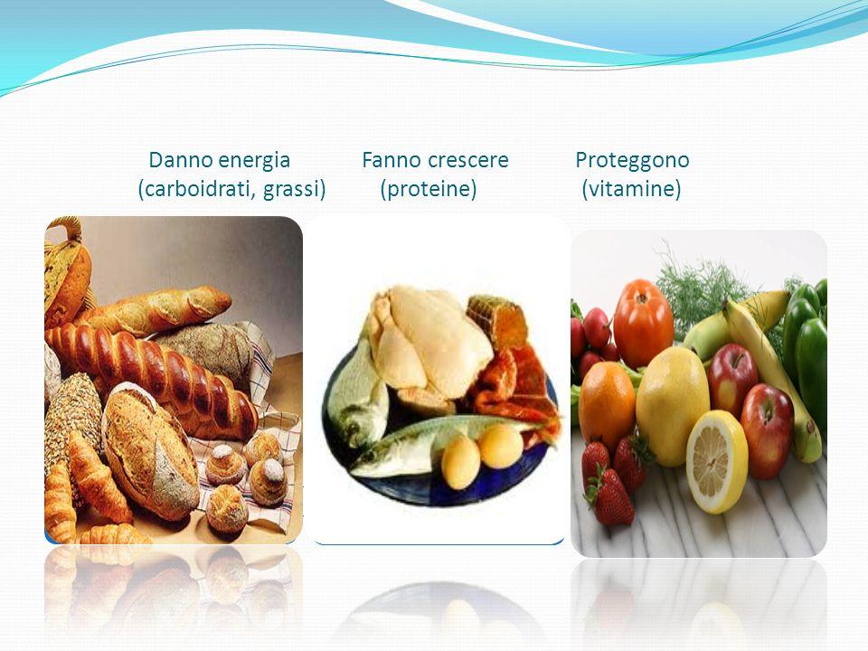 Danno energia Fanno crescere Proteggono (carboidrati, grassi) (proteine) (vitamine)