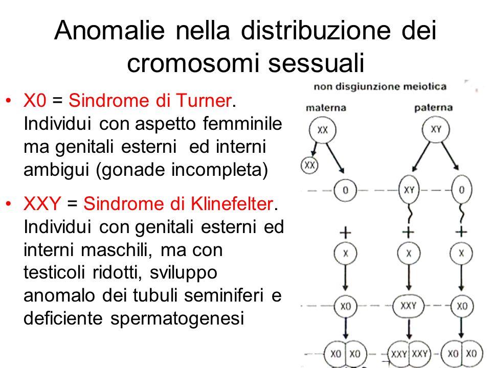Anomalie nella distribuzione dei cromosomi sessuali X0 = Sindrome di Turner. Individui con aspetto femminile ma genitali esterni ed interni ambigui (g