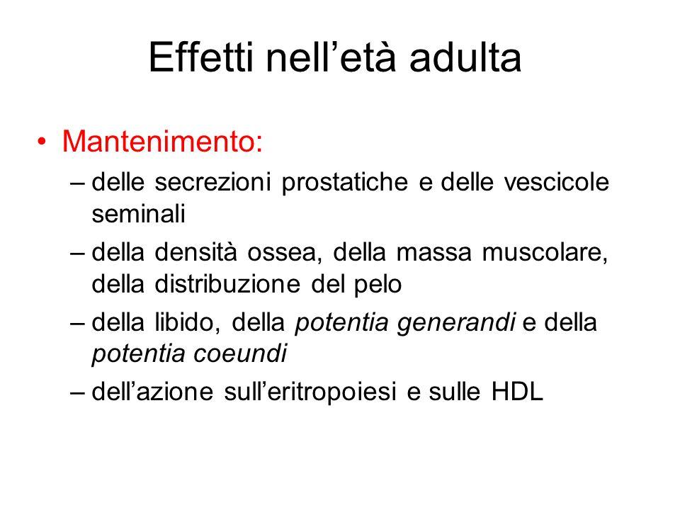 Effetti nelletà adulta Mantenimento: –delle secrezioni prostatiche e delle vescicole seminali –della densità ossea, della massa muscolare, della distr