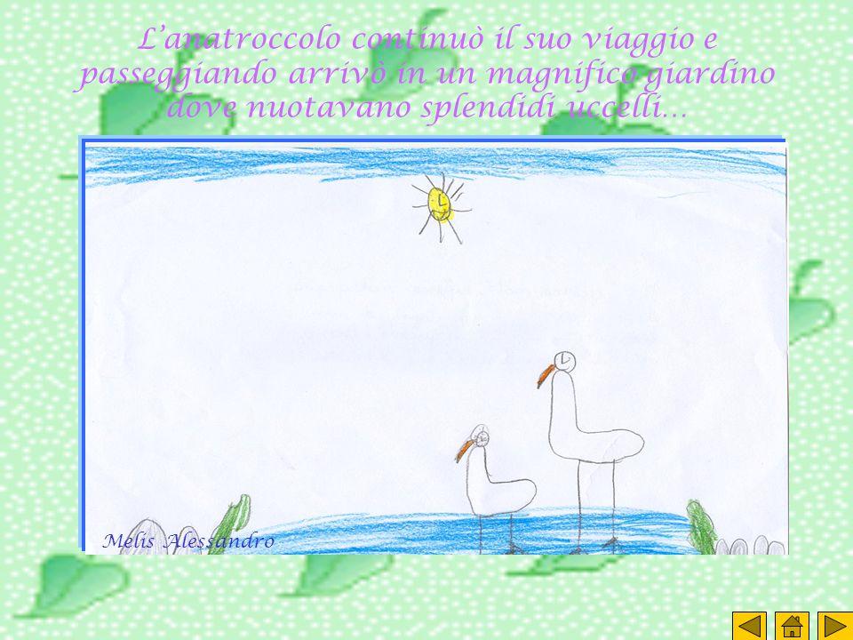 Lanatroccolo continuò il suo viaggio e passeggiando arrivò in un magnifico giardino dove nuotavano splendidi uccelli… Melis Alessandro