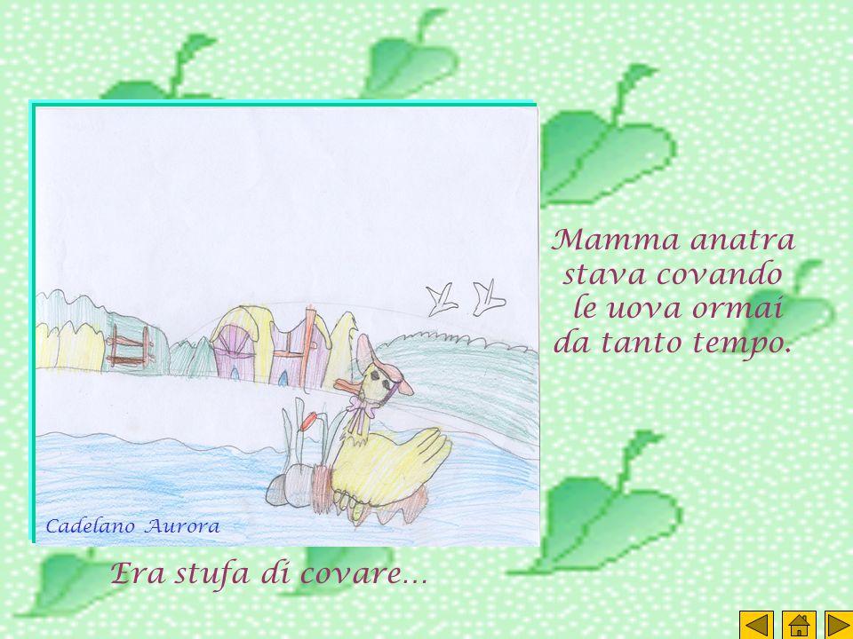 …Luovo più grande non si era ancora schiuso, così Mamma anatra continuò a covare…. Frongia Fabio