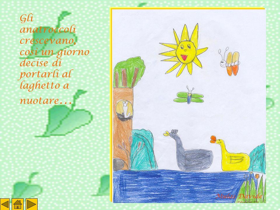 Gli anatroccoli crescevano, così un giorno decise di portarli al laghetto a nuotare … Mulas Davide