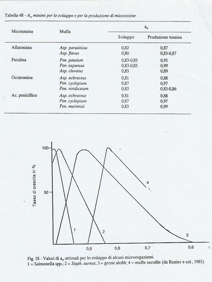 Valori minimi e massimi di pH per lo sviluppo dei microrganismi Microrganismi (esempi) Minimo pHMassimo pH Acidoresistenza Micrococcus sp.