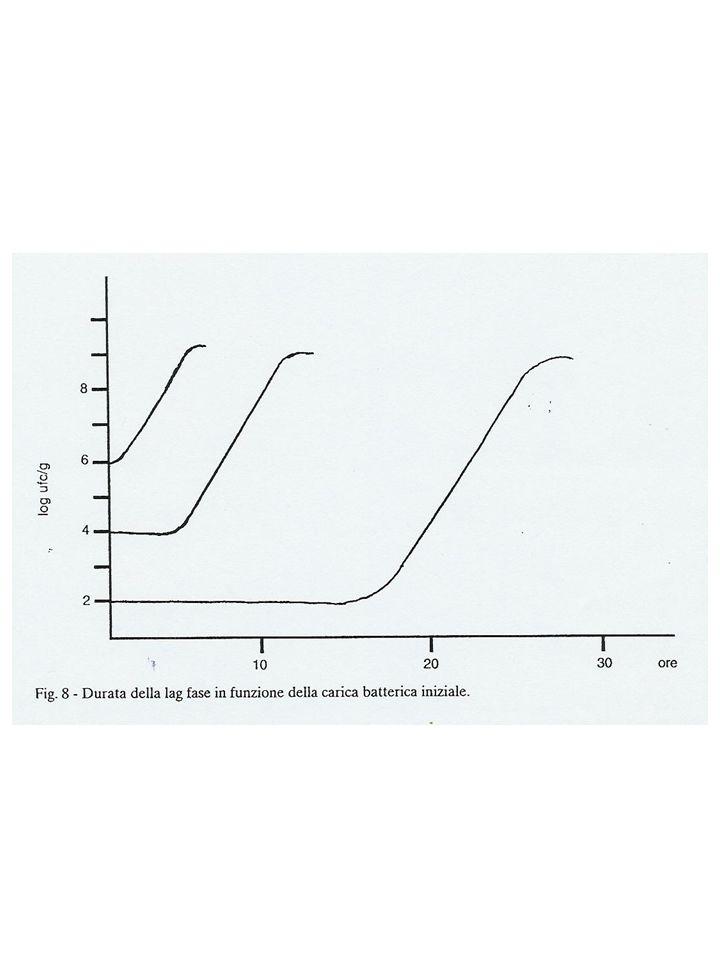 PROCEDIMENTI DI CONSERVAZIONE DELI ALIMENTI CONSERVAZIONE Procedimenti chimici Procedimenti fisici Procedimenti biologici Atmosfera gassosa Abbassamento del valore a w Riscaldamento, raffreddamento irradiazione Aggiunta di Conservanti Salamoia affumicatura Sottrazione di acqua: Essiccamento Affumicatura Congelamento Salatura Aggiunta di zucchero salamoia Pastorizzazione Cottura Sterilizzazione Congelamento refrigerazione Radiazioni UV β e γ Gas protettivo (CO 2, N 2 ) Confezionamento sotto vuoto Fermentazione lattica
