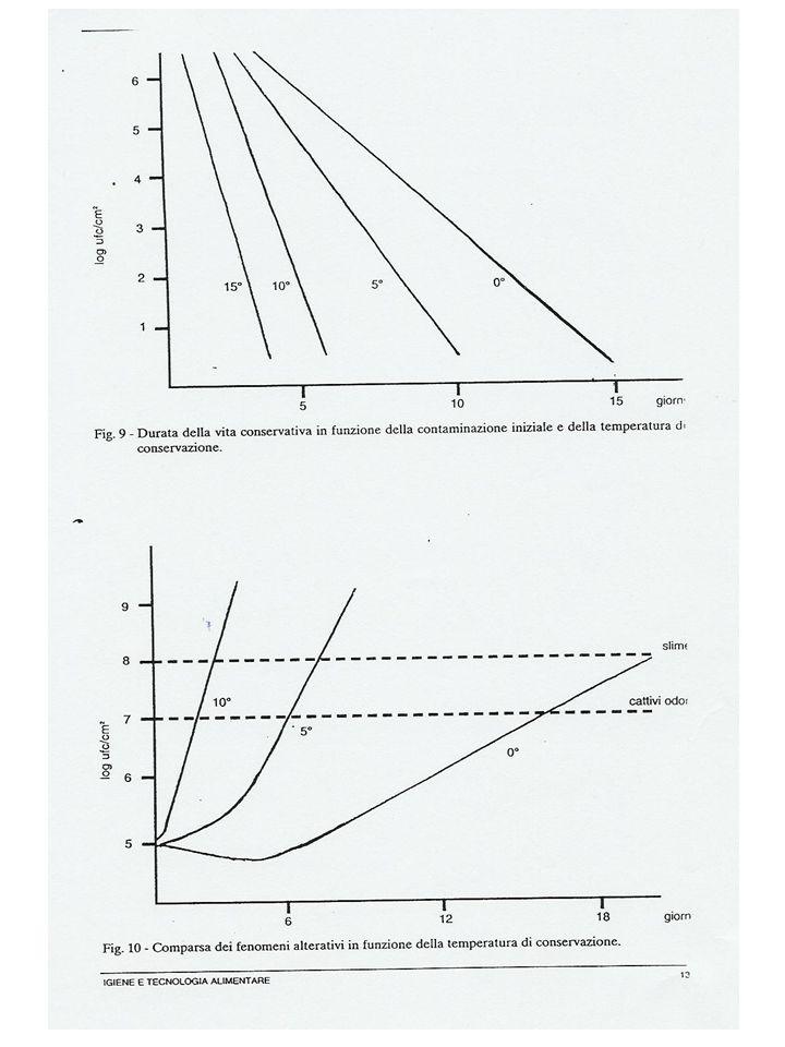Relazione tra carica microbica in psicrofili dopo pasteurizzazione e vita conservativa del latte conservato a 6°C Carica in psicrofiliVita conservativa in giorni* 1/100 ml>10 1,1/ml8-10 0,84/ml6-8 13,8/ml5-6 80,2/ml<5 * Tempo richiesto per raggiungere una carica in psicrofili di 10 7.5 /ml Ricerca fosfatasi - processo di pasteurizzazione idoneo + ricerca indicatori di processo - Sottopasteurizzazione (ricercare le cause) + contaminazione post processo (ricercare il momento in cui si è verificato) Schema di verifica del processo di pasteurizzazione del latte