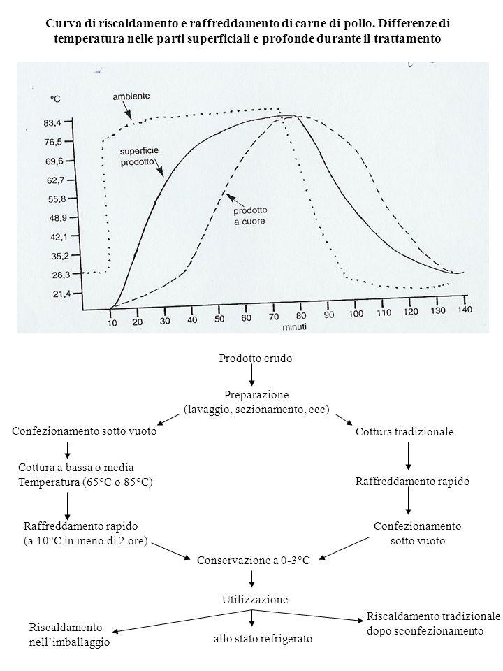 Effetto CO 2 : 1.Allungamento fase latenza (lag) 2.Aumento tempo di duplicazione (tanto > quanto bassa T) 3.Massimo effetto su G- (> responsabili di alterazione per alimenti conservati al freddo)