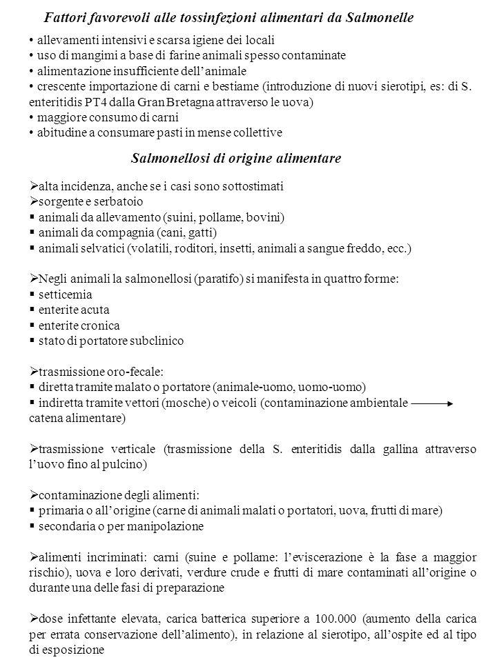 Le Salmonelle Famiglia enterobacteriacee, genere Salmonella Specie S.