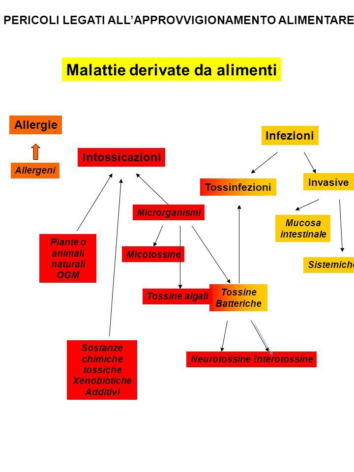ALIMENTI UOMO MALATO o PORTATORE S.aureus, S typhi, Shigella, C.