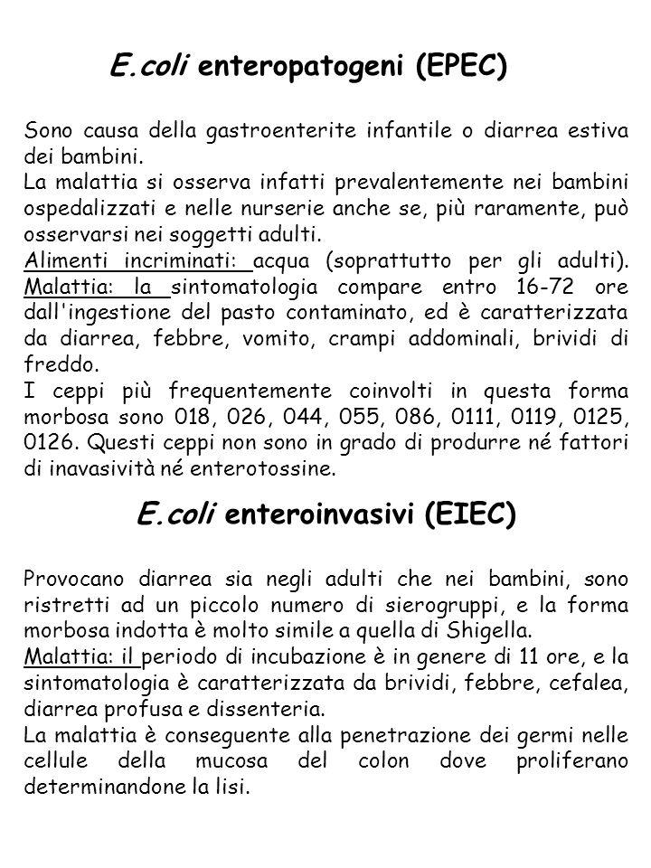 E.coli enterotossigeni (ETEC) Sono responsabili di diarrea sia nei bambini che negli adulti; in questi ultimi provocano la cosiddetta diarrea del viaggiatore .