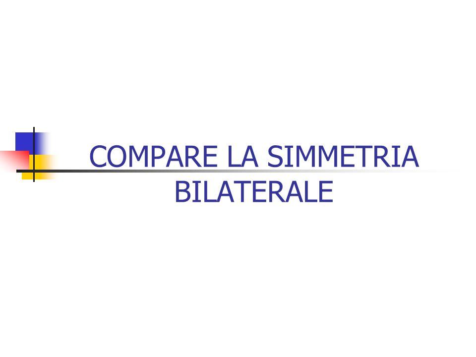 COMPARE LA SIMMETRIA BILATERALE