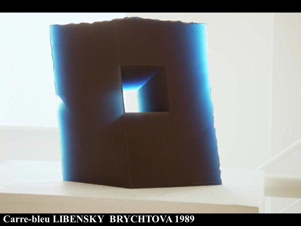 Carre-bleu LIBENSKY BRYCHTOVA 1989