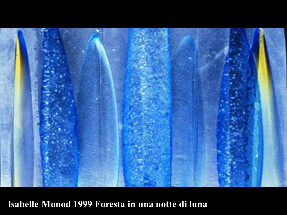 Isabelle Monod 1999 Foresta in una notte di luna