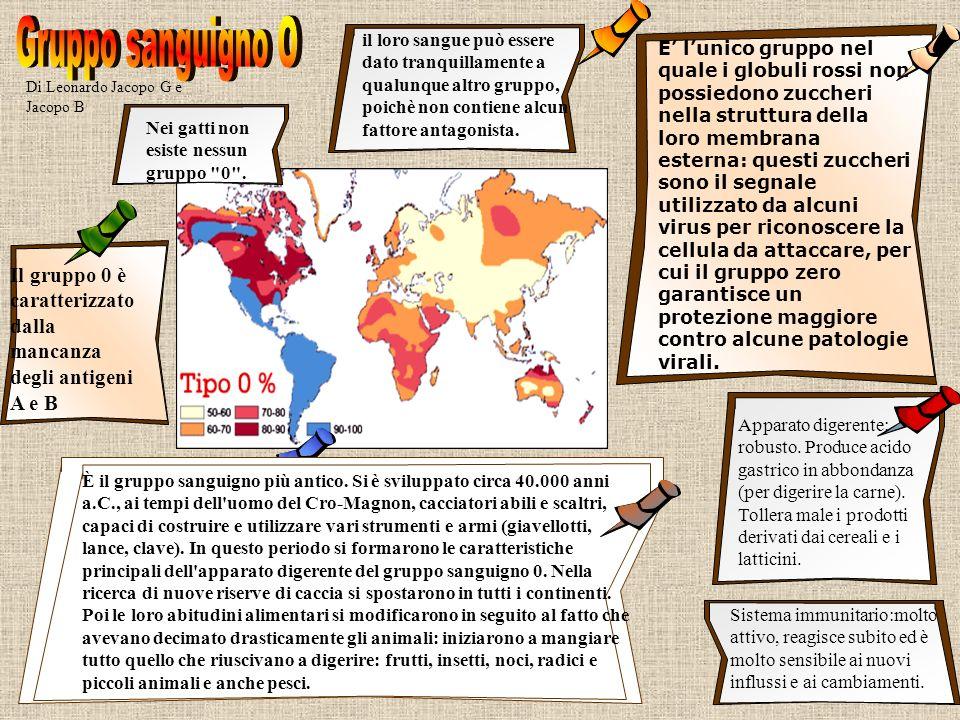 Di Leonardo Jacopo G e Jacopo B Il gruppo 0 è caratterizzato dalla mancanza degli antigeni A e B E lunico gruppo nel quale i globuli rossi non possied