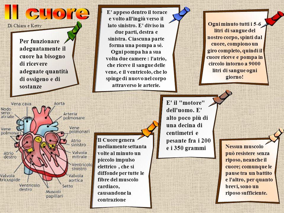 Di Chiara e Ketty Ogni minuto tutti i 5-6 litri di sangue del nostro corpo, spinti dal cuore, compiono un giro completo, quindi il cuore riceve e pomp