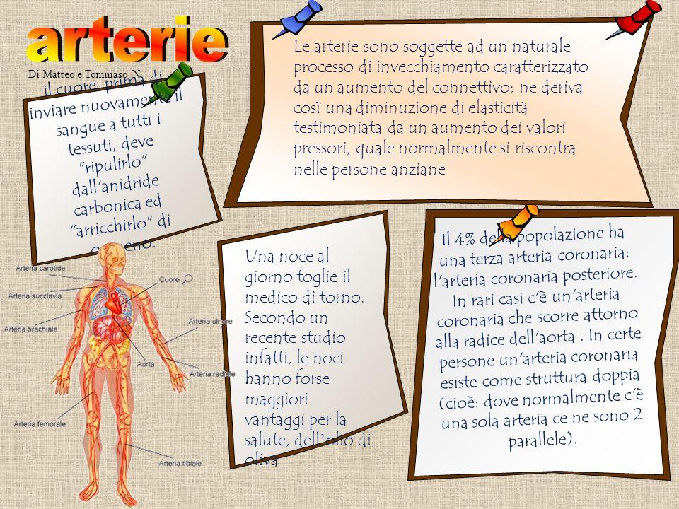 Di Vittoria e Milena La quantit à complessiva del sangue che circola nel corpo umano, è uguale alla tredicesima parte del peso di tutto il corpo, per cui un uomo di peso medio avrebbe 4/5 Kg.