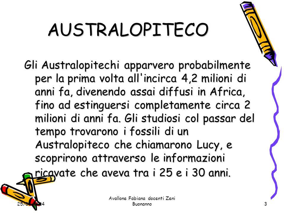 25/04/2014 Avallone Fabiana docenti Zeni Buonanno3 AUSTRALOPITECO Gli Australopitechi apparvero probabilmente per la prima volta all incirca 4,2 milioni di anni fa, divenendo assai diffusi in Africa, fino ad estinguersi completamente circa 2 milioni di anni fa.